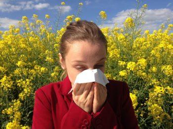 la alergia al polen