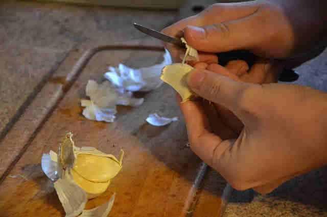 pelando allium sativum