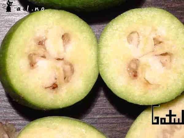 fruta Acca sellowiana