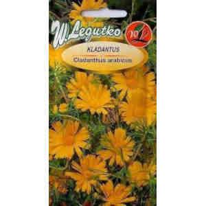 propiedades semillas margarita amarilla